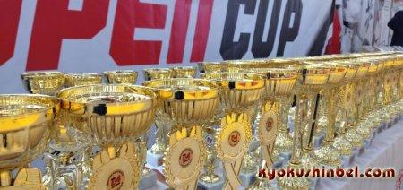 Немного в фото об Открытом Кубке Лиды!