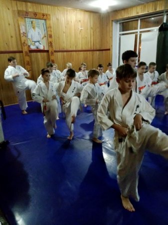 Квалификационные сборы киокушин-кан карате. День 1. Мальчики / девочки: 8-11 лет